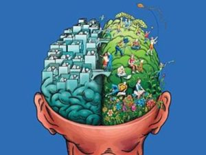 Left Brain/Right Brain: An Outdated Notion?